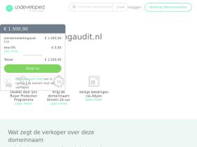 onlinemarketingaudit.nl