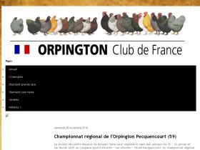 orpington-club.fr