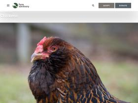 poultry.org