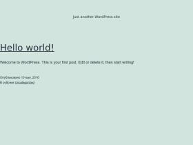 prolint-plus.ru