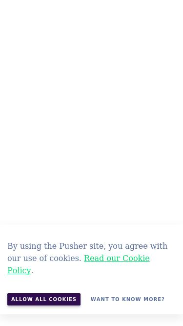Pusher com Analytics - Market Share Stats & Traffic Ranking