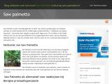 saw-palmetto.nl