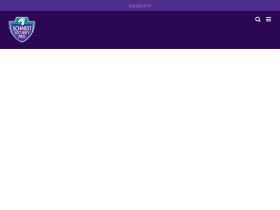 schmidtsecurity.com