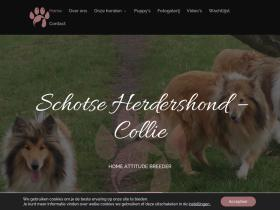 schotse-collie.be