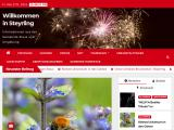 steyrling.at