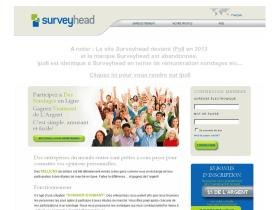 surveyhead.fr