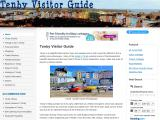 tenbyvisitorguide.co.uk
