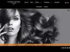 thierry-antoine.fr