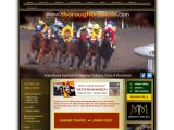 thoroughbredinfo.com