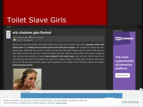 toiletslavegirls.wordpress.com