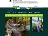 torquaysdinosaurworld.co.uk