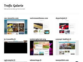 traficgalerie.fr
