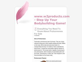 w2products.com