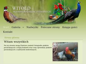 witold-hodowla.mtx.pl