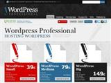 wordpressprofessional.it