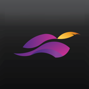 Robinhood Mobile App Ranking